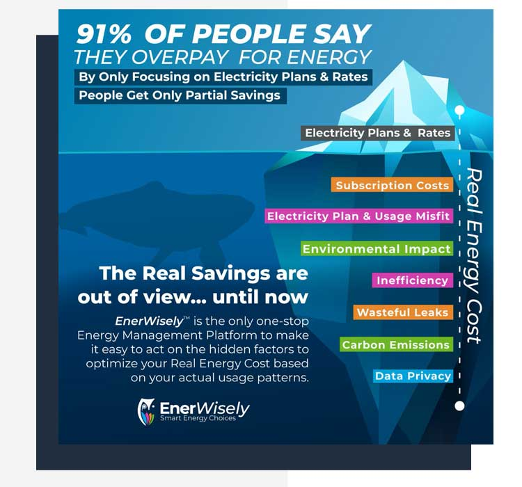 EnerWisely helps find the energy savings that are out of sight