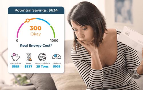 EnerWisely le ayuda a calcular y controlar sus costos energéticos reales
